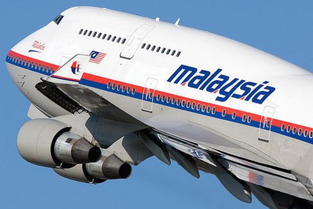 malaysia airlines lizard squad