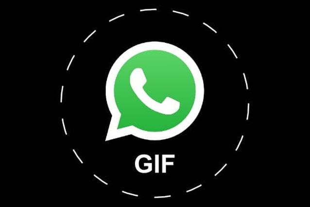 WhatsApp integra il motore di ricerca di Giphy e Tenor per inviare GIF animate
