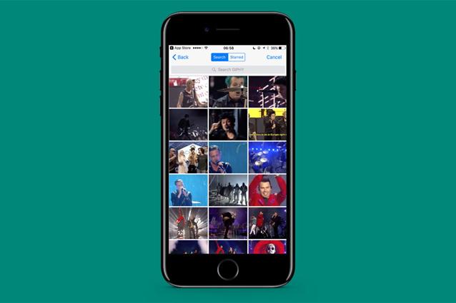 WhatsApp per iPhone si aggiorna: ecco come inviare GIF animate