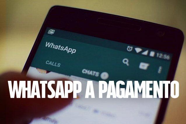 WhatsApp a pagamento per le aziende: ecco come funzionerà